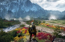 Understanding The Witcher 3's lore through its plant life | PCGamesN