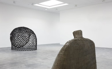 Martin Puryear's Open Questions